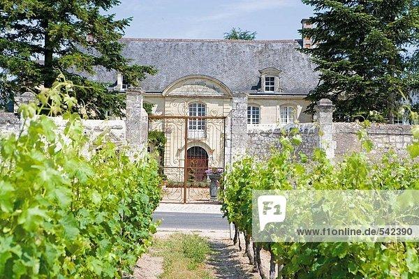 Weingut Hotel  Manoir De Restigne  Indre-Et-Loire  Frankreich