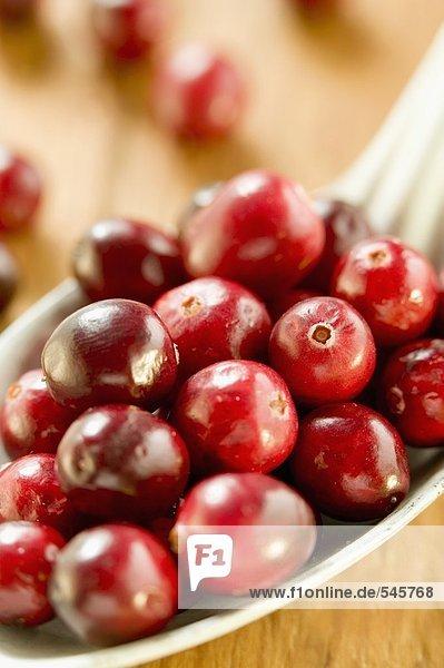 Mehrere Cranberries auf Löffel
