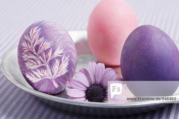 Drei gefärbte Ostereier mit Blüte auf einem Teller