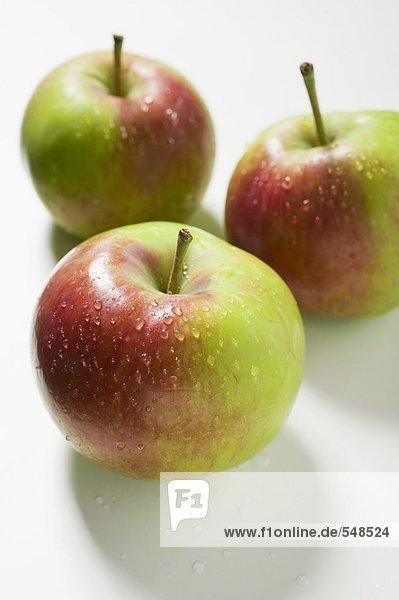 Drei frische Äpfel mit Wassertropfen