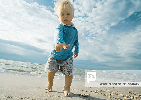 Toddler on beach  pointing