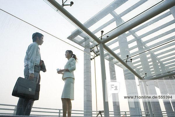 Junge Geschäftsleute stehen unter überdachtem Gehweg  von Angesicht zu Angesicht  Blickwinkel niedrig