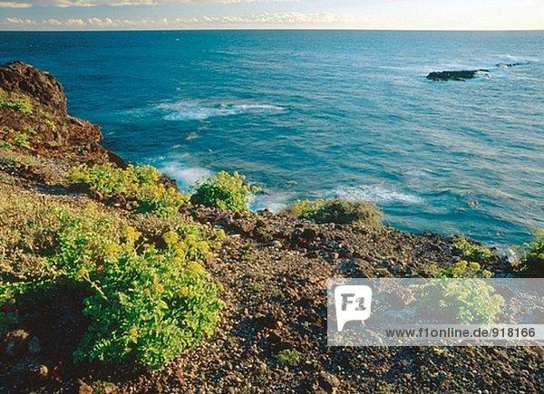 Caleta de Adeje. Teneriffa. Kanarischen Inseln. Spanien