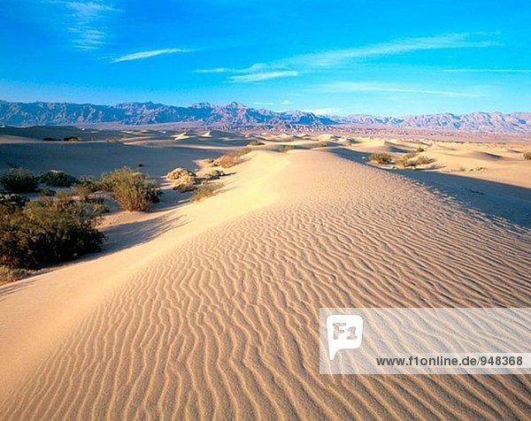 Sand dunes at Stovepipe Wells. Death Valley National Park. Inyo county. California. USA