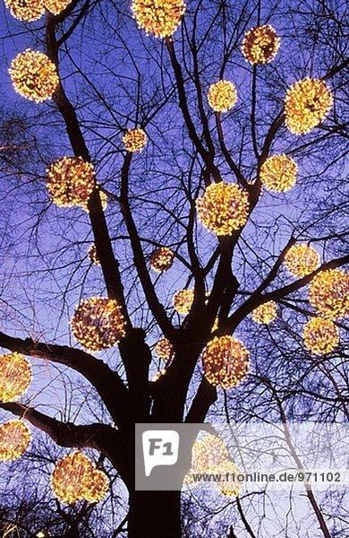 Weihnachtsbeleuchtung Außen Für Große Bäume.Weihnachtsbeleuchtung Außen Für Bäume Italiaansinschoonhoven