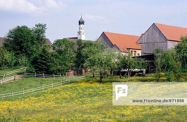 Feld Bayern Deutschland