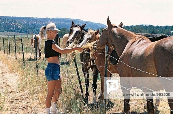 Mädchen Pferdefütterung