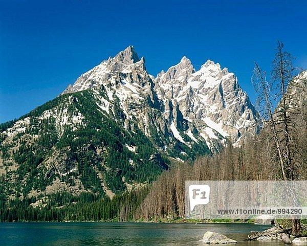 Der Cathedral Group von Jenny Lake. Grand Teton Nationalpark. Wyoming. USA.