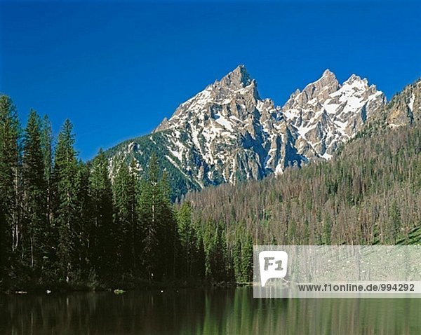 Die Kathedrale-Gruppe aus String Seen. Grand Teton Nationalpark. Wyoming. USA.