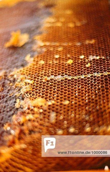Honig. Ein Bienenhaus.