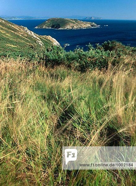 Fedorento Ons. Ons Insel. Nationalpark Islas Atlánticas. Pontevedra. Spanien.