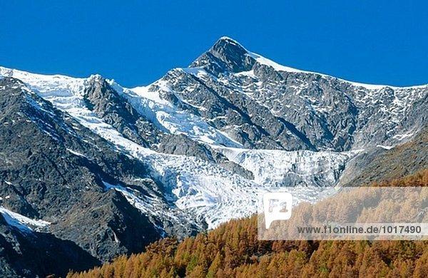 Schweizer Alpen in Herbst und Lärche Bäumen gesehen von Saas-Fee. Wallis