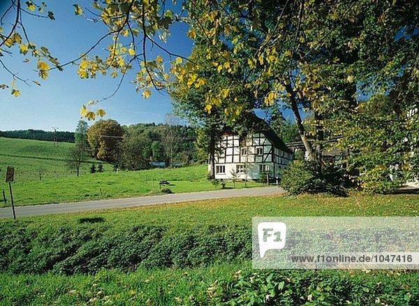 Landschaft Herbst Fachwerkhaus Deutschland Nordrhein-Westfalen Nordrhein-Westfalen