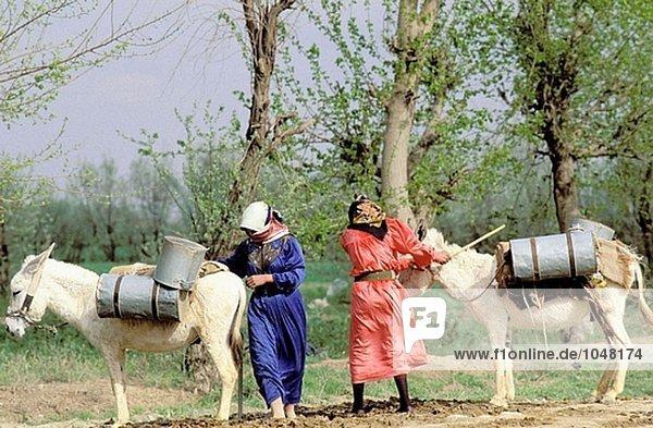 Frau auf der Suche nach Wasser am Euphrat. Syrien