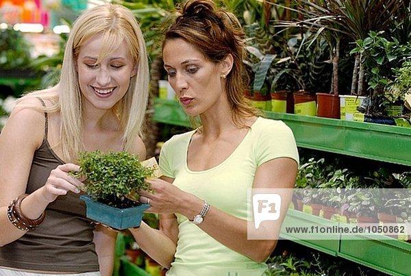 Junge Frauen auf der Suche nach Zimmerpflanzen Einkaufszentrum