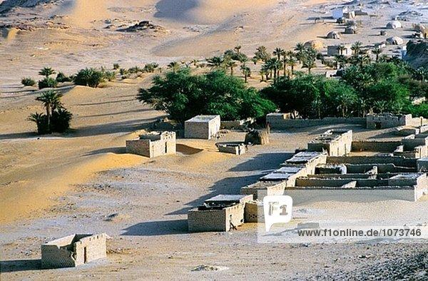 Faya Largeau Oasis. Ennedi Massif. Sahara Desert. Chad