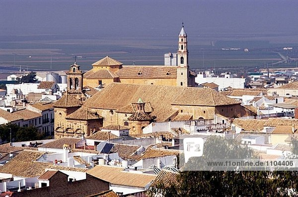 Rooftop view of Osuna. Andalucia. Spain