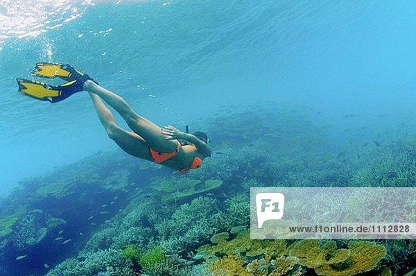 Snorkler bei flaches Riff. Bikini-Atoll.