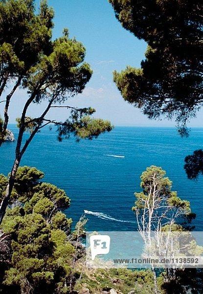 Mallorca  Balearen. Spanien