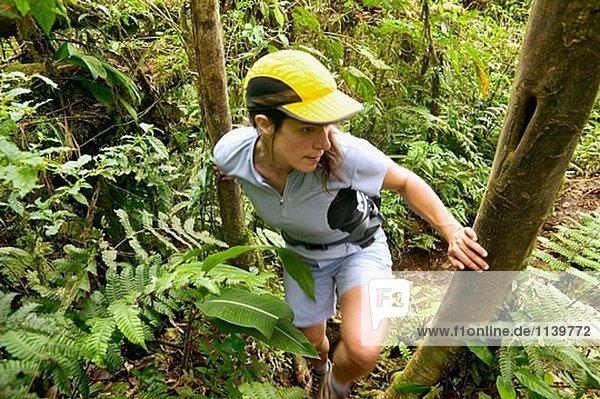 Wandern  Costa Rica  Vulcan Arenal  Cerro Chata trail