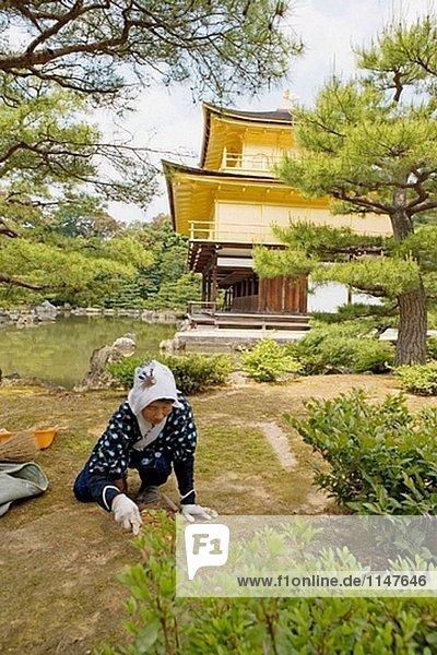 fünfstöckig Buddhismus Japan Kyoto