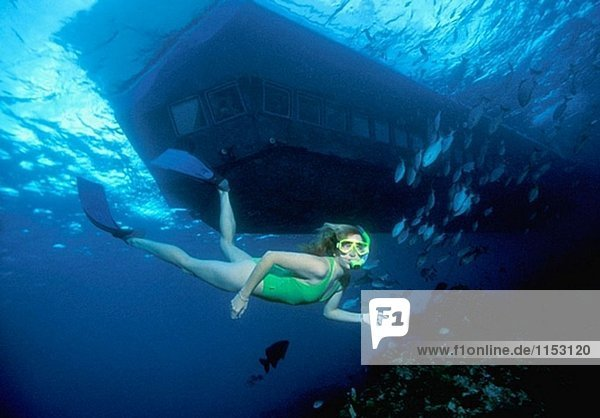 A snorkeler dives past the Atlantis Submarine while off a shallow reef South wall  Grand Cayman  Cayman Islands  Caribbean