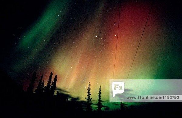 Aurora Borealis oder Nothern Lights. Yukon-Territorium. Kanada
