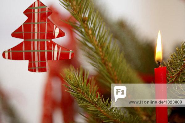 Kerze brennt auf einem Weihnachtsbaum  fully_released