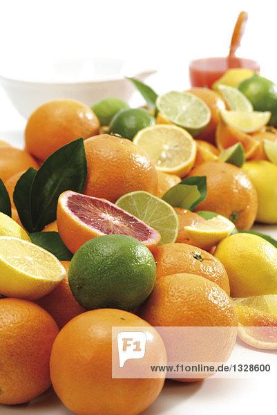Verschiedene Zitrusfrüchte  Nahaufnahme
