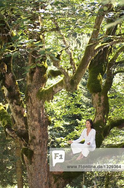 Junge Frau beim Meditieren auf Baumzweig,  Seitenansicht