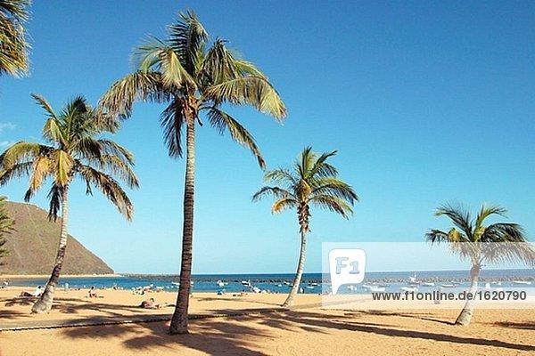 Strand. Santa Cruz De Tenerife. Teneriffa. Kanarischen Inseln. Spanien