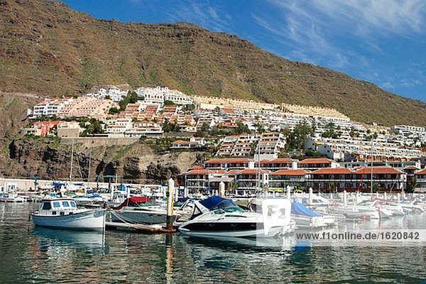 Puerto de Santiago. Tenerife. Canary Islands. Spain