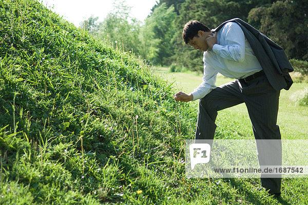 Kaufmann von grasbewachsenen Hügel stehen  Kommissionierung Grashalm