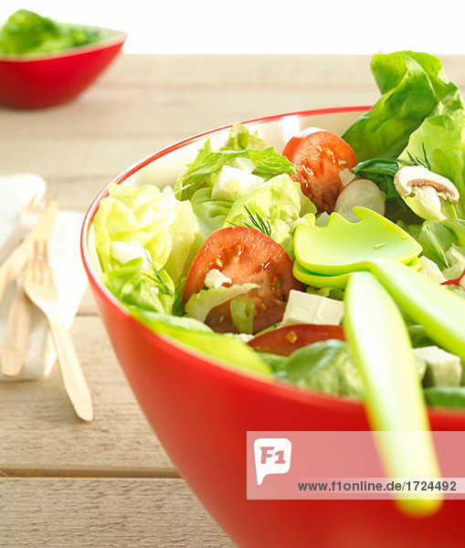 Gemischter Salat in roter Schüssel