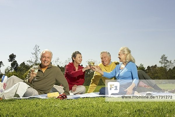 Senior couples having a picnic in meadow
