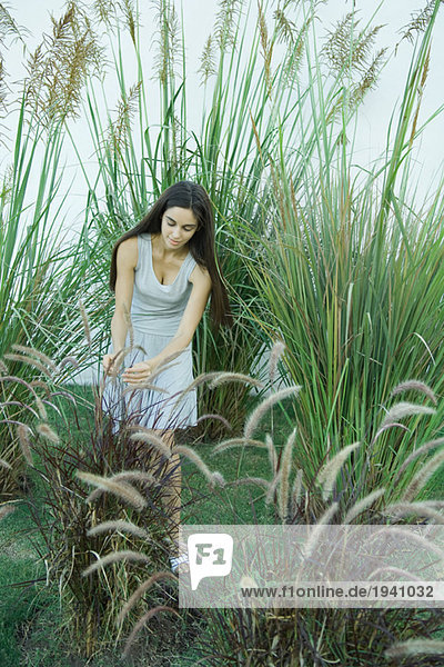 Woman standing in ornamental garden  bending over  looking at foliage