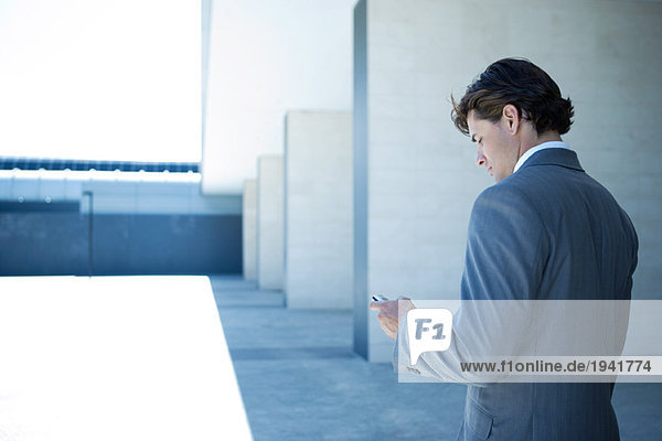 Young businessman looking at cell phone,  rear view