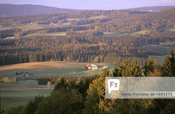 Landschaft  bei Freyung  Bayerischer Wald  Deutschland  Hochwinkelansicht