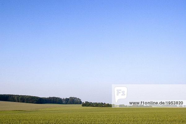 Fields in Bavaria  Germany