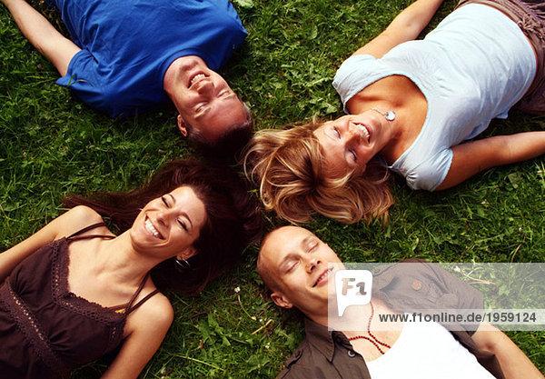 Vier Freunde im Gras liegend