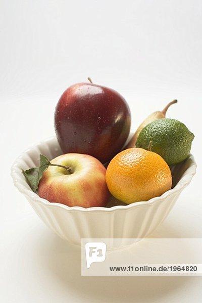 Kernobst und Zitrusfrüchte in weisser Schale