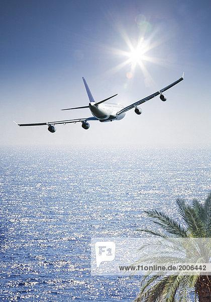 Passagierflugzeug fliegt über Palme und das Meer  Composing Passagierflugzeug fliegt über Palme und das Meer, Composing