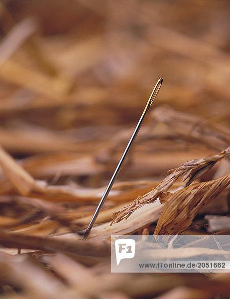 10488543  noch Leben  Symbole  Nadel  Brosche  Haycock  Stroh  close Up  sagte: