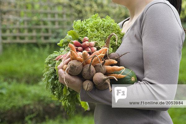 Gemüse Patch