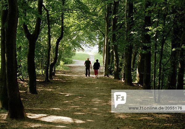 Ein älteres Ehepaar auf einem von Bäumen gesäumten Weg