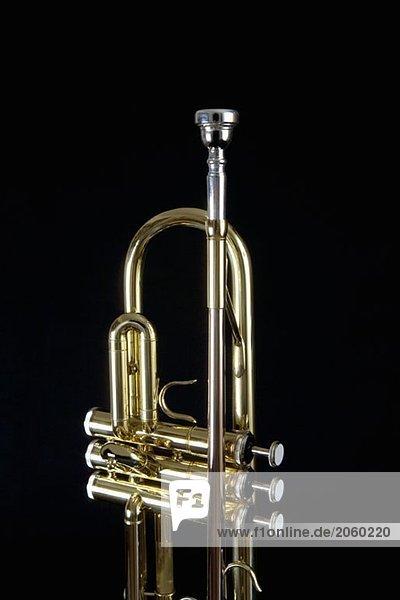 365048,Biegen Sie sich,Blasinstrument,Farbe,Farbe