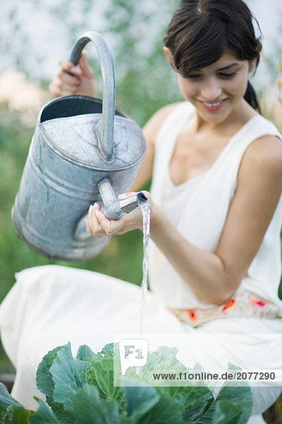 Bewässerung Kohl mit Watering Can weiblich