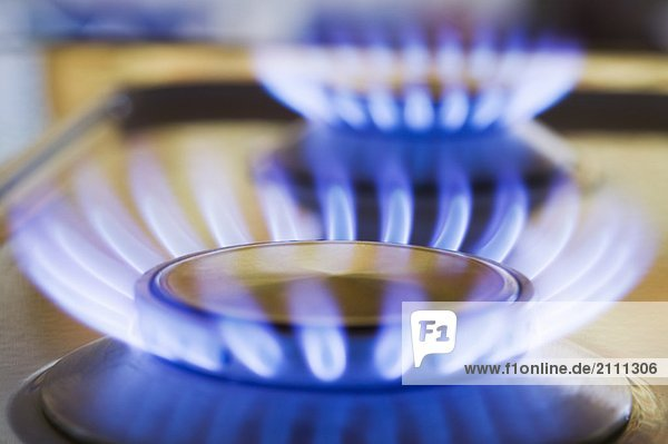 Natural Gas Stove Burner  West Vancouver  B.C.