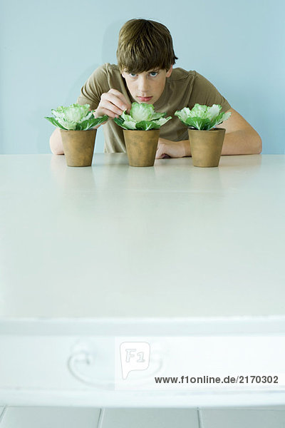 Boy leaning toward potting plants  looking at camera