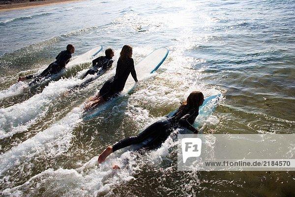 Vier Leute liegen auf Surfbrettern im Wasser.